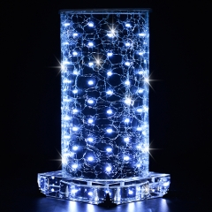 Black and White LED luminous vase