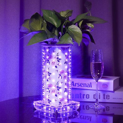 Purple Rose luminous vase(High Round)