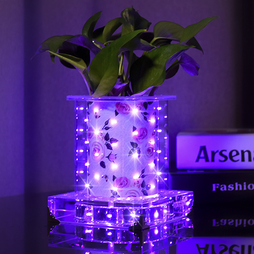 Purple Rose luminous vase (Short Square)