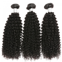 Luxtresses Kinky Curly Hair Bundles Remy Human Hair Extensions Natural Color Buy 3 Bundles Thick Kinky Curly