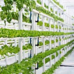 Indoor Vertical Farming (PVC Profiles)