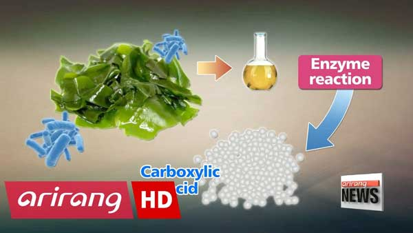 Korean scientists developed manufacturing technology for eco-friendly algae bioplastics