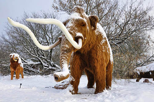 Animatronic Mammoth