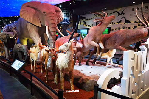 Indoor Exhibition Animatronic Mechanical Animal