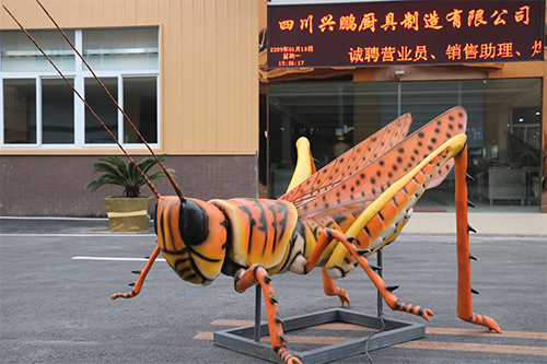 Giant Size Realistic Insects for Exhibition