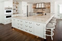 Tansitional white kitchen with gold brass accent and framed insert door-Allandcabinet