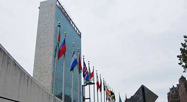 Ruige Monitors Are Engaged In The UN Headquarters Renovation