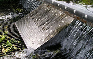 Fish Protection for Water Intake Structures