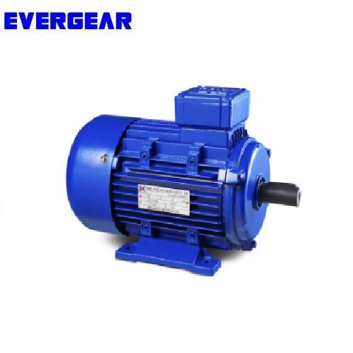 IE2 Three Phase Electric Motor