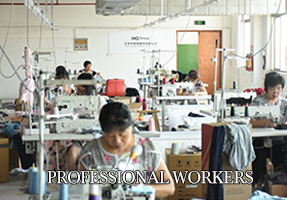 Professional Workers