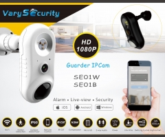 LED Security light SE01W
