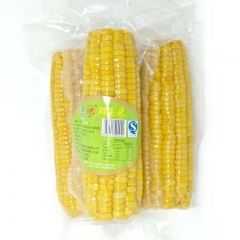 Vacuum pouch packed sweet corn sterilization