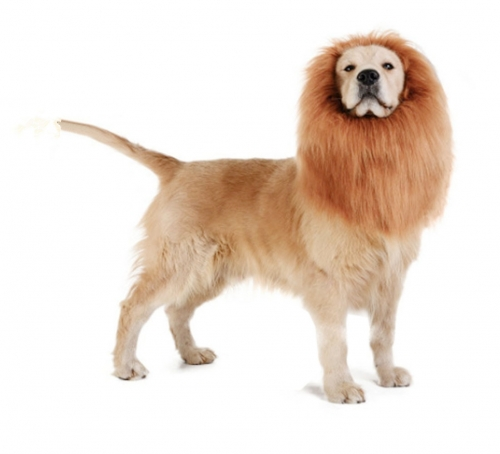 Dog Lion Mane,Dog Halloween Costumes