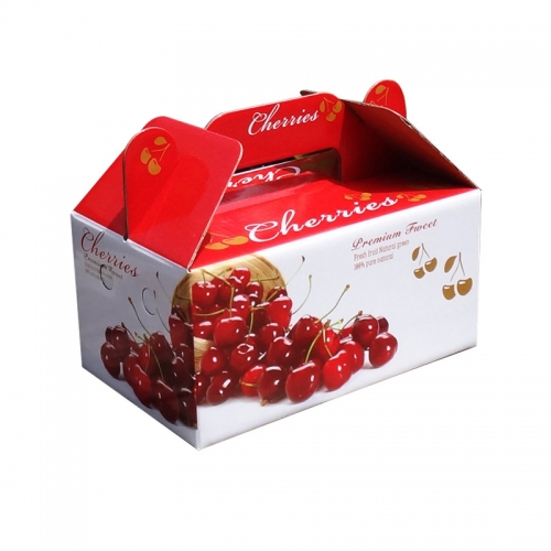 Foldable Box Colored Corrugated Fruit Packaging Carton Printed Customized Paper Boxes Cardboard