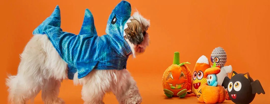 Select Halloween Costumes, Toys for Dogs and Cats