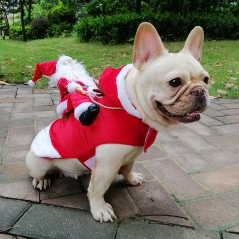 Puppy Dog Santa Christmas Costume