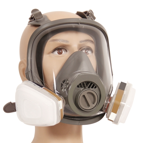 Trudsafe 6900 Full Face Respirator for Painting, Dust and Vapor for Industrial Use, Painting and Welding