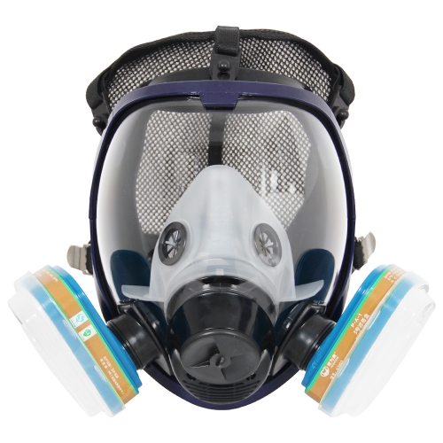 Complete Suit Trudsafe 6800 Full Face Respirator Mask for Dust and Chemical Use