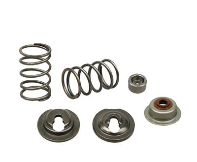Valve Springs,Rotor cap,Spring Keepers and Stem Oil Seal Kit Fits for China 168F 170F GX160 GX200 163CC~212CC 5.5hp~7.5hp Small Gas Engine