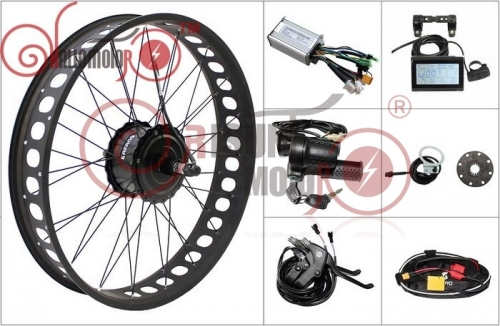 36V 48V 250W 350W 500W 750W eBike Bafang Threaded Fat Tire Rear Tire Conversion Kit for 175mm Rear Dropout Width