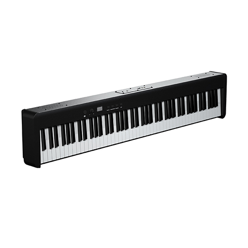 BX5 Hammer Action Piano | Weighted keyboard Digital Piano
