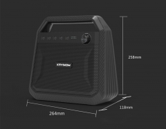 Portable Multifunctional Livestream Speaker