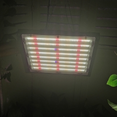 Best full spectrum led grow light for indoor plants led lighting dimmable 150w 300w 600 watt 900w