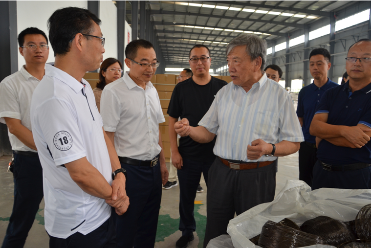 A group of experts from the Chinese Academy of Sciences went to Dazhou to investigate the development of the mysterious fiber industry