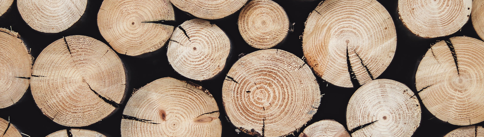 Safe and Sustainable Wood Resource