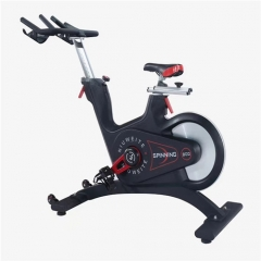 Luxury Magnetic Spinning Bike , Exercise Bike