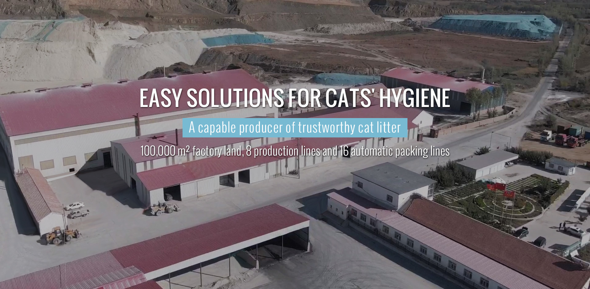 EASY SOLUTIONS FOR CATS