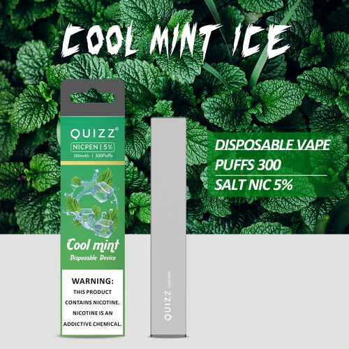 QUIZZ Brand Disposable Vape 300 Puffs