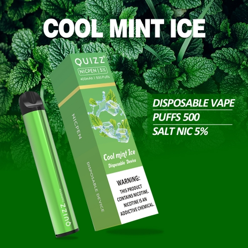 500 puffs Disposable Vape Device