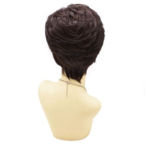 Black Short Classic Full Wigs Layered for Women Natural Looking Heat Resistant Replacement Wig For Women Breathable and Comfortable. Women's Hair