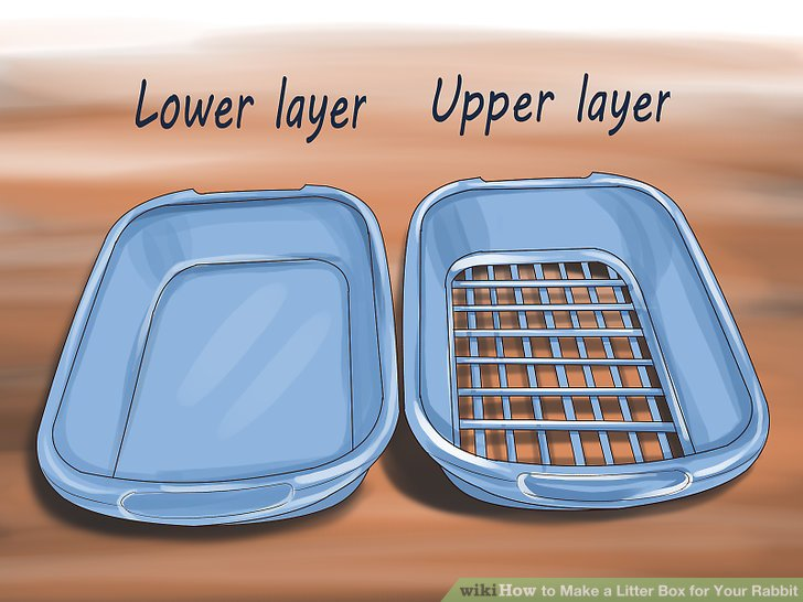How to Make a Litter Box for Your Rabbit
